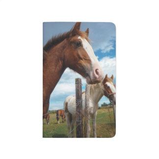 Kastanjebrun häst med viteldsvåda & vänner bundna anteckningsböcker
