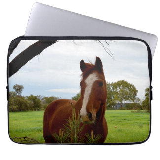 Kastanjebrun häst som sniffar ett Banksiaträd, Laptop Sleeve