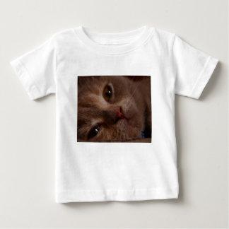 Katt - ansikte - till - ansikte tröjor