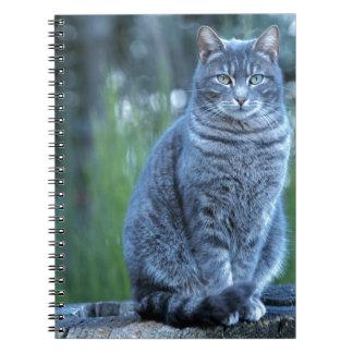 Katt Anteckningsbok