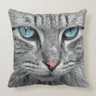 Katt Dekorativ Kudde