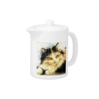 Katt för Calico 0010