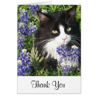 Katt för tackkortsmoking i Texas Bluebonnets Hälsningskort