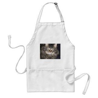 Katt Förkläde