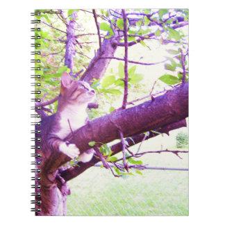 Katt i en Apple trädanteckningsbok Anteckningsbok