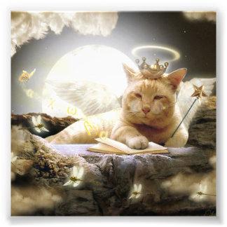 Katt i himmelfototryck fototryck