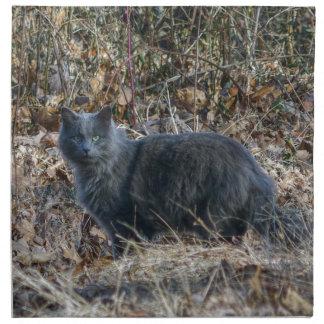 Katt i skogen tygservett