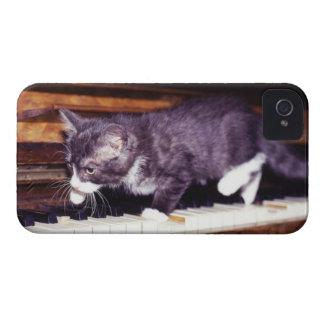 katt iPhone 4 fodral