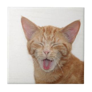 katt kakelplatta