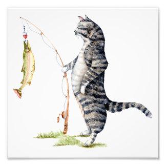 Katt med en fisk fototryck