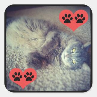 Katt med tassavtryck av Shirley Taylor Fyrkantigt Klistermärke