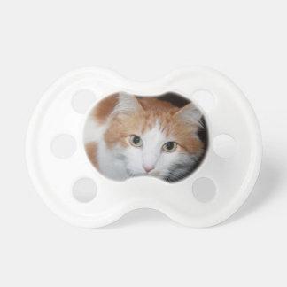 Katt Napp