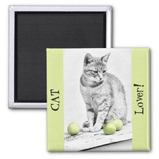 Katt och äpplen