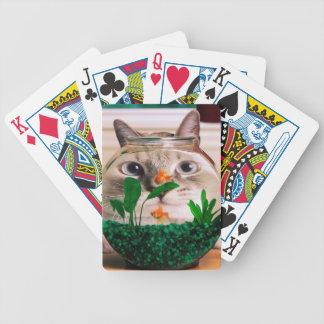 Katt och fisk - katt - roliga katter - galen katt spelkort