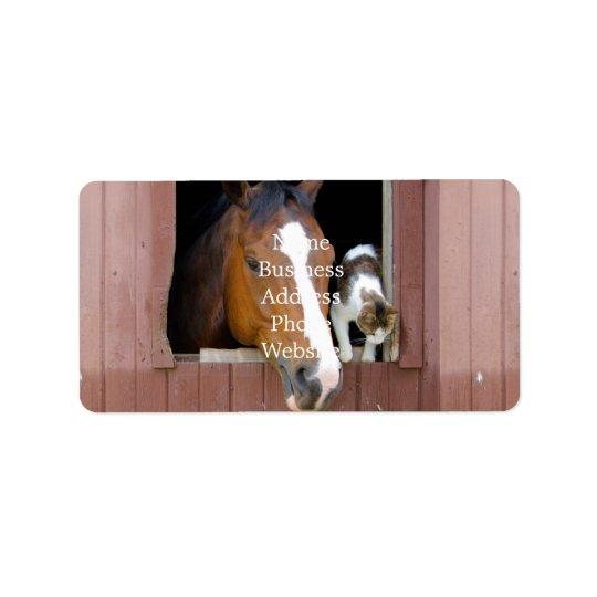 Katt och häst - hästranch - hästälskare adressetikett