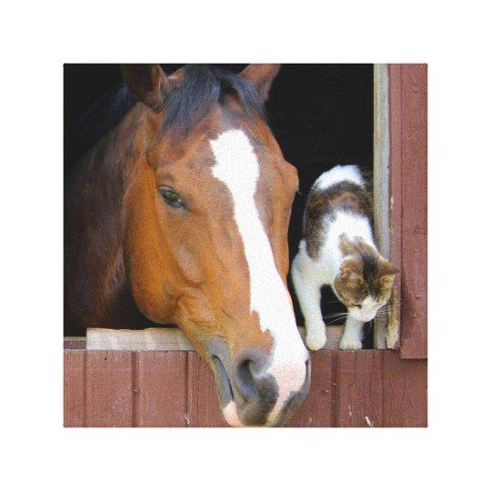 Katt och häst - hästranch - hästälskare canvastryck