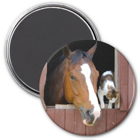Katt och häst - hästranch - hästälskare magnet rund 7.6 cm