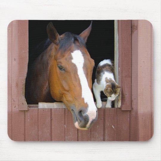 Katt och häst - hästranch - hästälskare musmatta