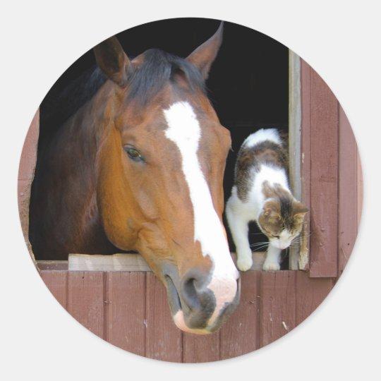 Katt och häst - hästranch - hästälskare runt klistermärke