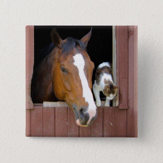 Katt och häst - hästranch - hästälskare standard kanpp fyrkantig 5.1 cm