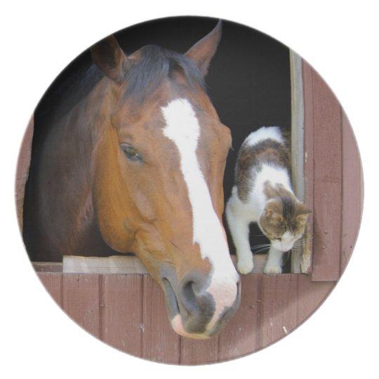 Katt och häst - hästranch - hästälskare tallrik