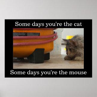 Katt- och musDemotivational affisch Poster