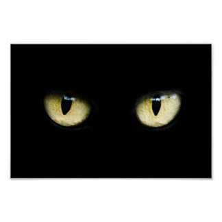 Katt ögon poster