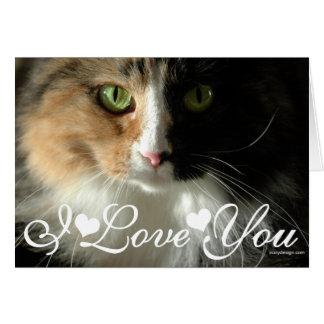 Katt ögon som fotoet avbildar mig, älskar dig hälsningskort