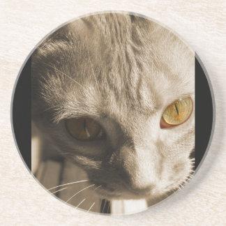 Katt ögon underlägg sandsten