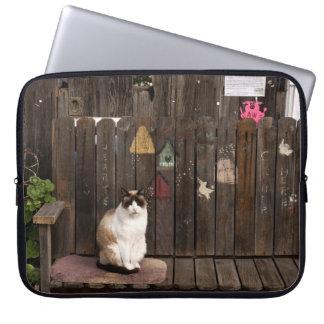 Katt på en ta av planet laptop fodral