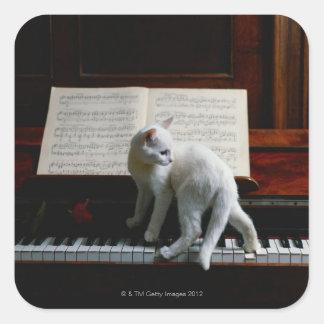 Katt på piano fyrkantigt klistermärke
