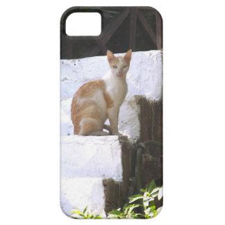 Katt på trappor iPhone 5 Case-Mate cases