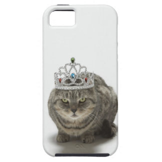 Katt som ha på sig en tiara tough iPhone 5 fodral
