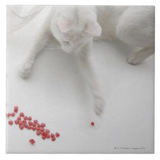 Katt som leker med den hjärtformade godisen kakelplatta