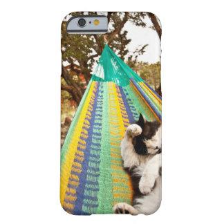 Katt som ljuger i Mayan mexicansk hängmatta Barely There iPhone 6 Skal