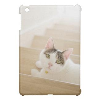 Katt som ljuger på trappor iPad mini skydd