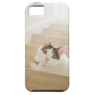 Katt som ljuger på trappor tough iPhone 5 fodral