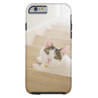 Katt som ljuger på trappor tough iPhone 6 fodral