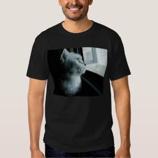 katt t shirts