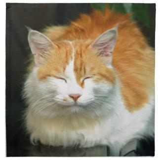katt tygservett