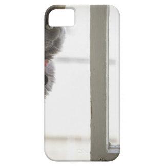 Katt vid fönstret iPhone 5 cases
