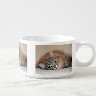 Katt Kopp För Chili