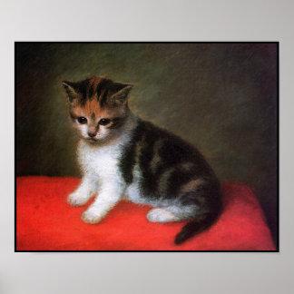 Kattaffisch: Kattungemålning av George Stubbs Poster