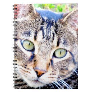 Kattanteckningsbok Spiral Anteckningsböcker