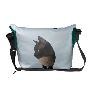 KATTEN HÄNGER LÖS (den siamese kattryggsäcken) Kurir Väska