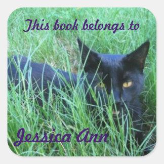 Katten i beställnings- bok för gräs pläterar fyrkantigt klistermärke