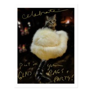 """Katten i pälslag """"firar"""" vykortet/förbigår vykort"""