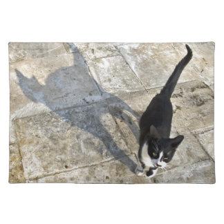 Katten med skuggar att gå in mot kamera bordstablett