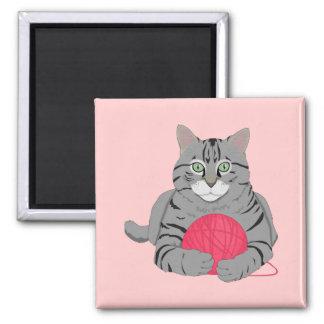 katten med stränger magnet