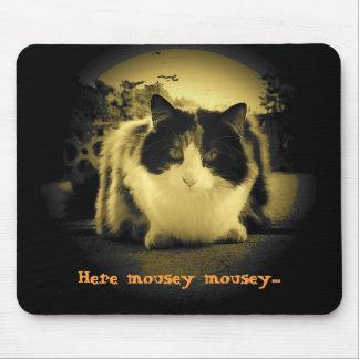 Katten önskar att möss ska komma ut och ska leka musmatta